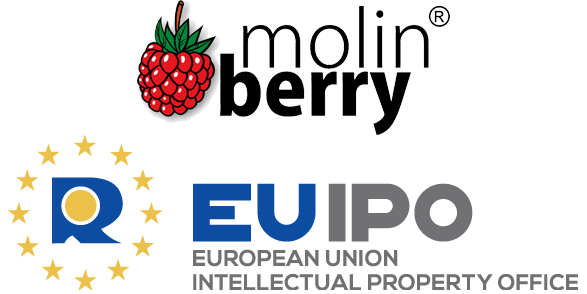 About Molinberry